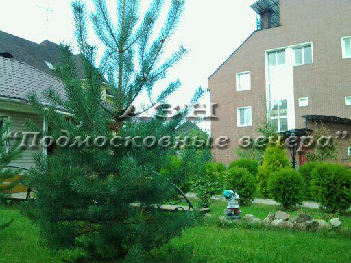 Московская область, Мытищинский район, Вешки